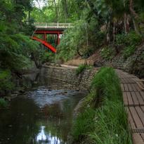 東京都内で自然を感じる!癒しのスポット「等々力渓谷」を散策