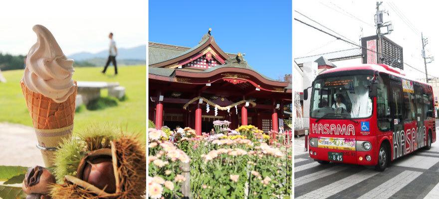 日本三大稲荷 笠間稲荷神社で開催「笠間の菊まつり」栗スイーツや日本酒もおすすめ