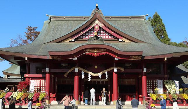 ไปเที่ยวชมเทศกาลดอกเบญจมาศ ณ ศาลเจ้าคาซามะอินาริ หนึ่งในสามศาลเจ้าที่ใหญ่ที่สุดของญี่ปุ่น