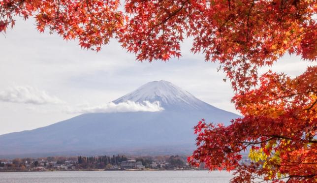 วิวภูเขาไฟฟูจิสุดปังกับใบไม้เปลี่ยนสีที่คาวากุจิโกะ