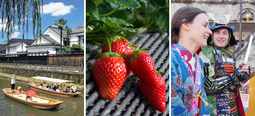 「採草莓」「和服體驗」一起來體驗栃木縣吧!