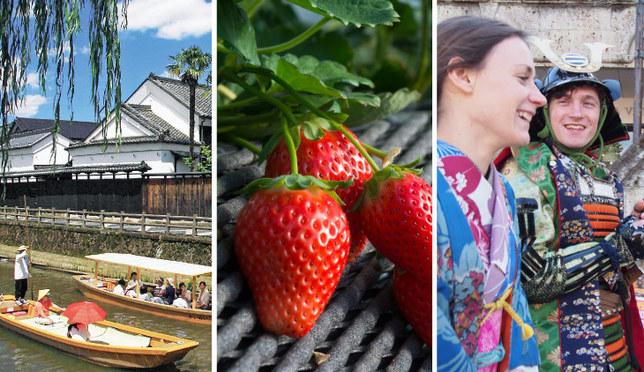 摘草莓!和服体验!一起来体验栃木县吧!
