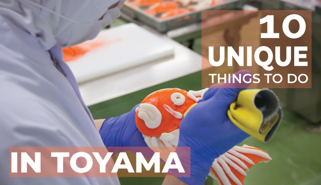 Cruising down the City of Medicine: 10 Unique Things to Do in Toyama City