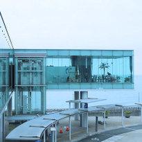 用一天搭乘巴士玩盡海陸!茨城縣日立市必訪景點一次蒐集