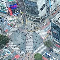 Shibuya Scramble Square: a Spectacular View Over the Shibuya Scramble Crossing