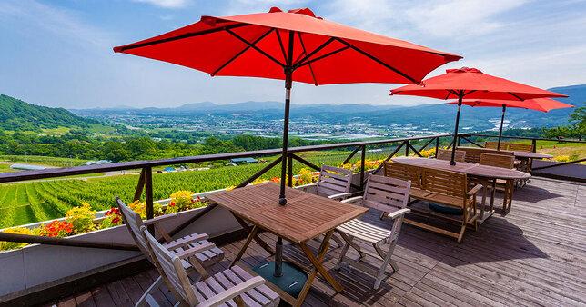 欣賞著漂亮的葡萄園景色,乾杯!北海道「NIKI Hills葡萄酒廠」