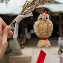 Zoshigaya: Follow the Owls to Another Hidden Gem in Tokyo