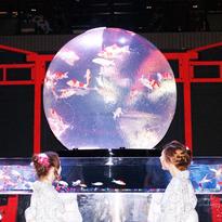 五感新體驗!「日本橋金魚裝置藝術展」