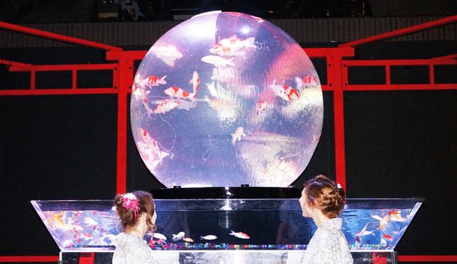 仿地球的正圓形水族箱上有世界地圖的浮雕,金魚在球體內漫遊。
