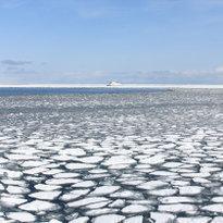 北海道流冰探險