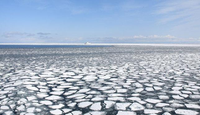 北海道流冰