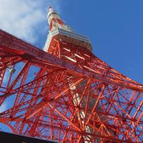 처음 가는 도쿄 자유여행 필수 코스
