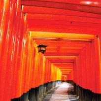 KYOTO - เที่ยวเกียวโตครั้งแรก! ศาลเจ้าจิ้งจอกขาว, วัดน้ำใส, ตลาดนิชิกิ
