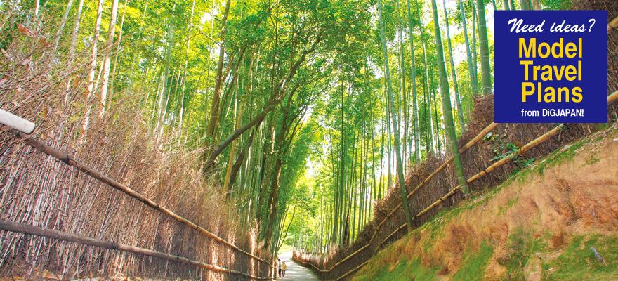 美拍京都1日遊