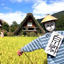 SHIRAKAWAGO-TAKAYAMA เที่ยวหมู่บ้านมรดกโลก!