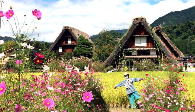 SHIRAKAWAGO-TAKAYAMA_เที่ยวหมู่บ้านมรดกโลก