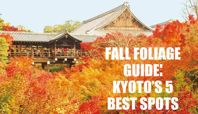 Best Fall Colors in Kyoto