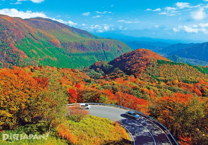Irohazaka Winding Road(Tochigi)