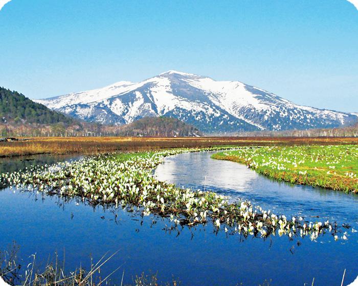 玩轉世界遺產・日光社寺及 尾瀨國立公園行程