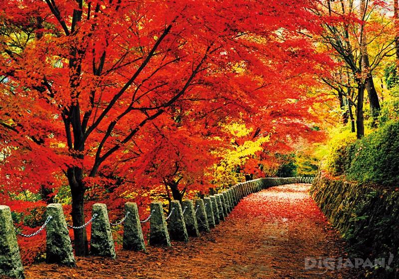 Mount Yoshino (Nara Prefecture)