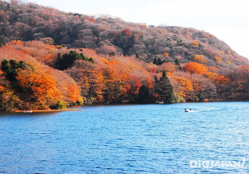 芦之湖(神奈川县)