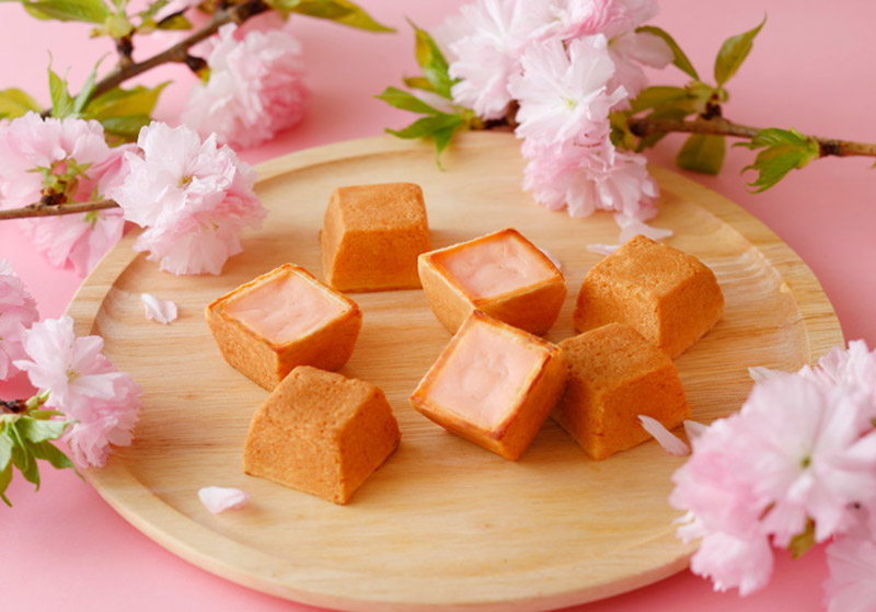 SHISEIDO Parlour春天的芝士蛋糕樱花味