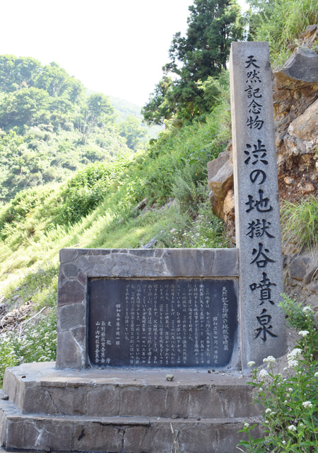 Jigokudani Monkey park information board