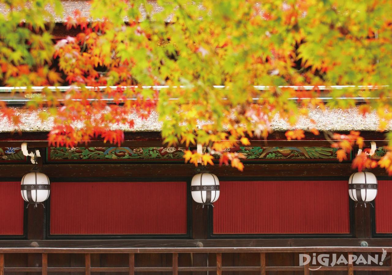 Autumn_Kyoto_9