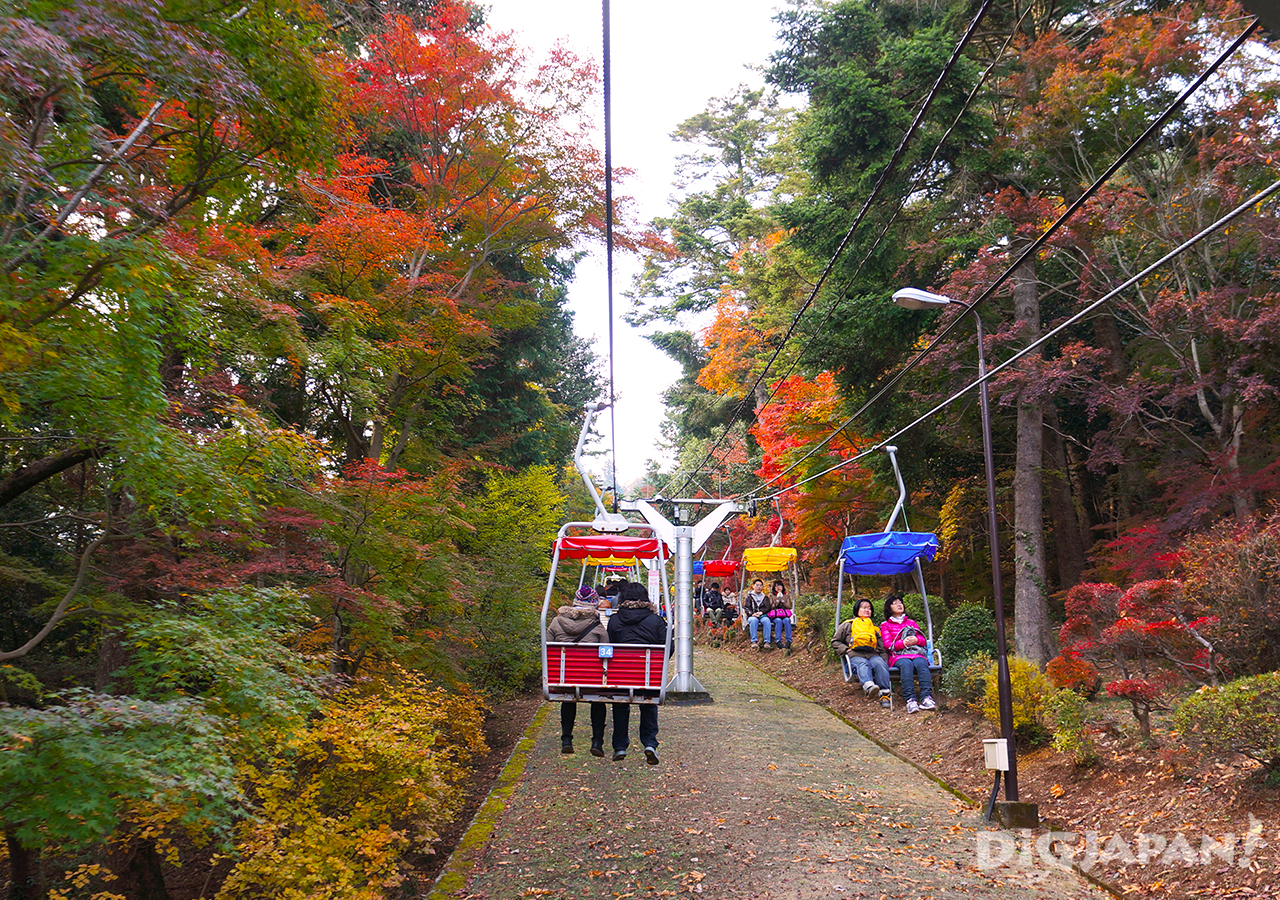 Enjoy autumn leaves with a ride on the cable car lift at Mt. Takao in Tokyo