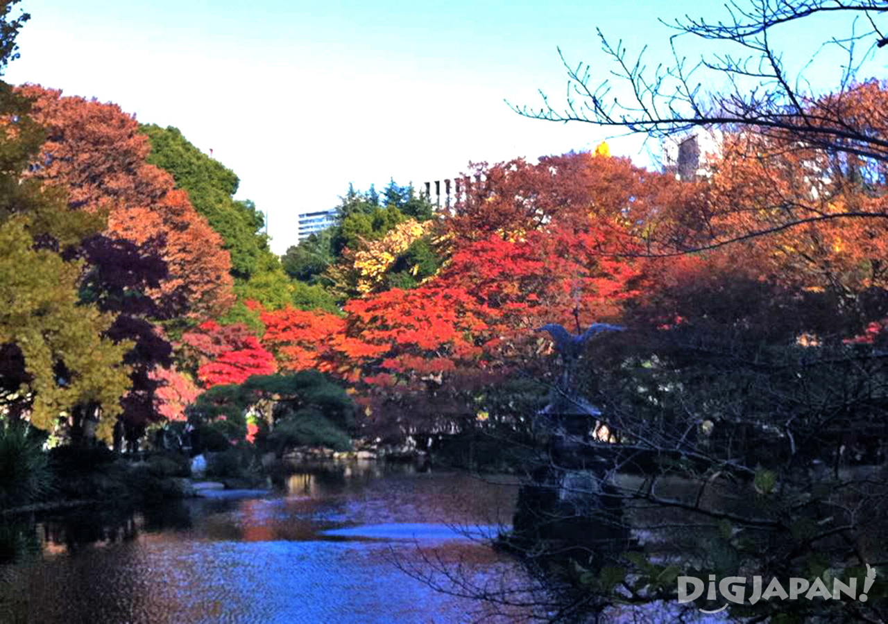 The lake at Hibiya Park during the fall