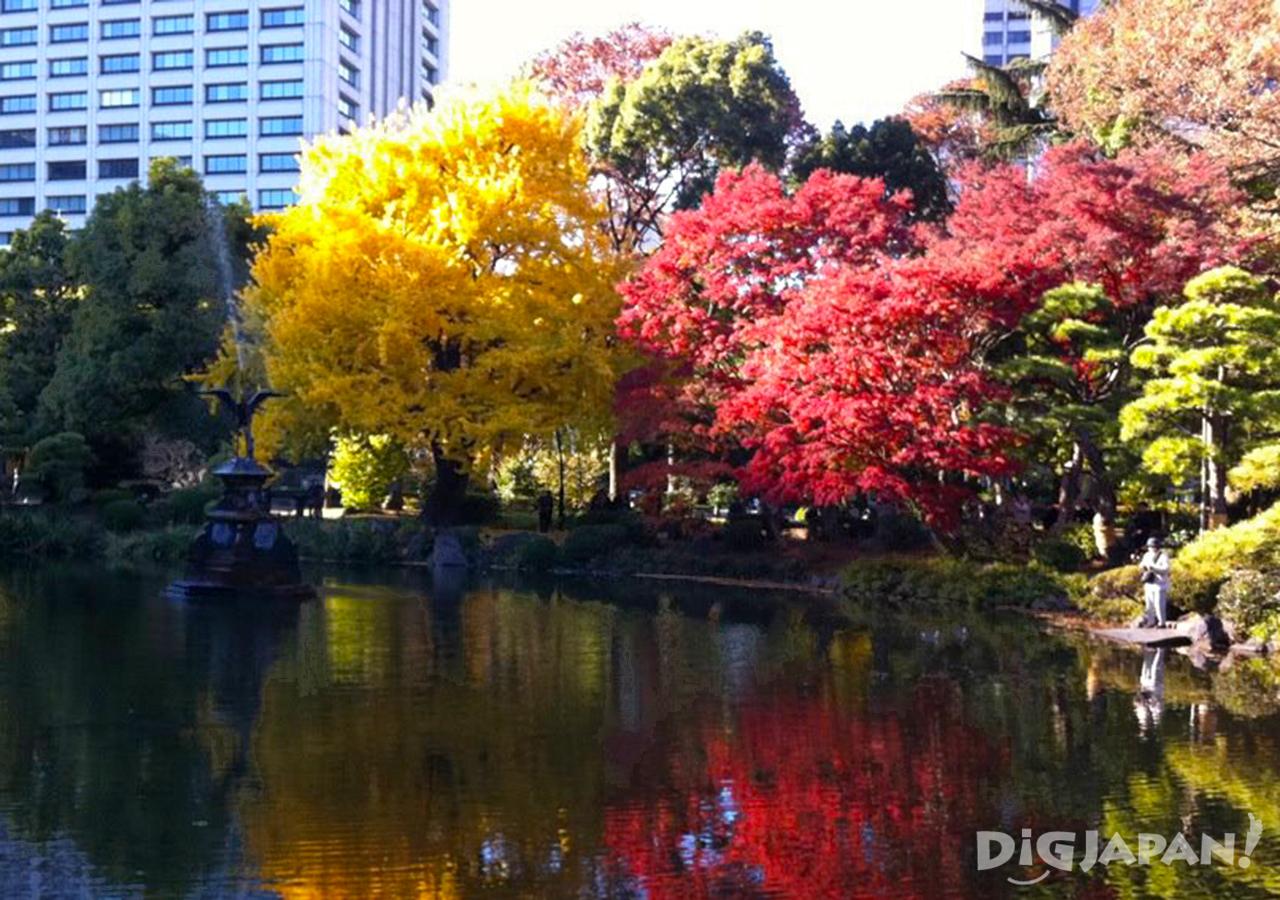 Autumn_Tokyo_12