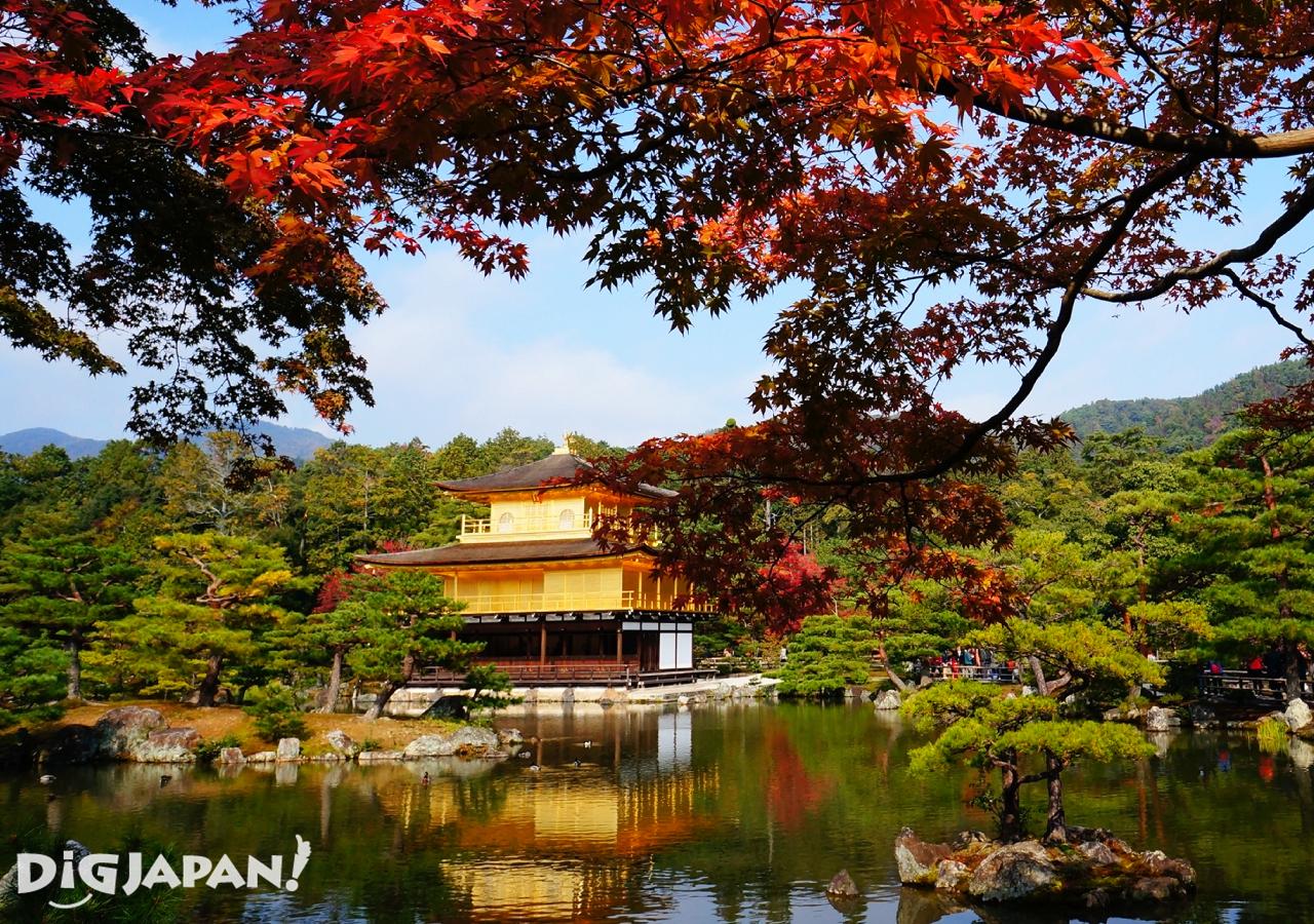 京都必看楓葉景點-金閣寺