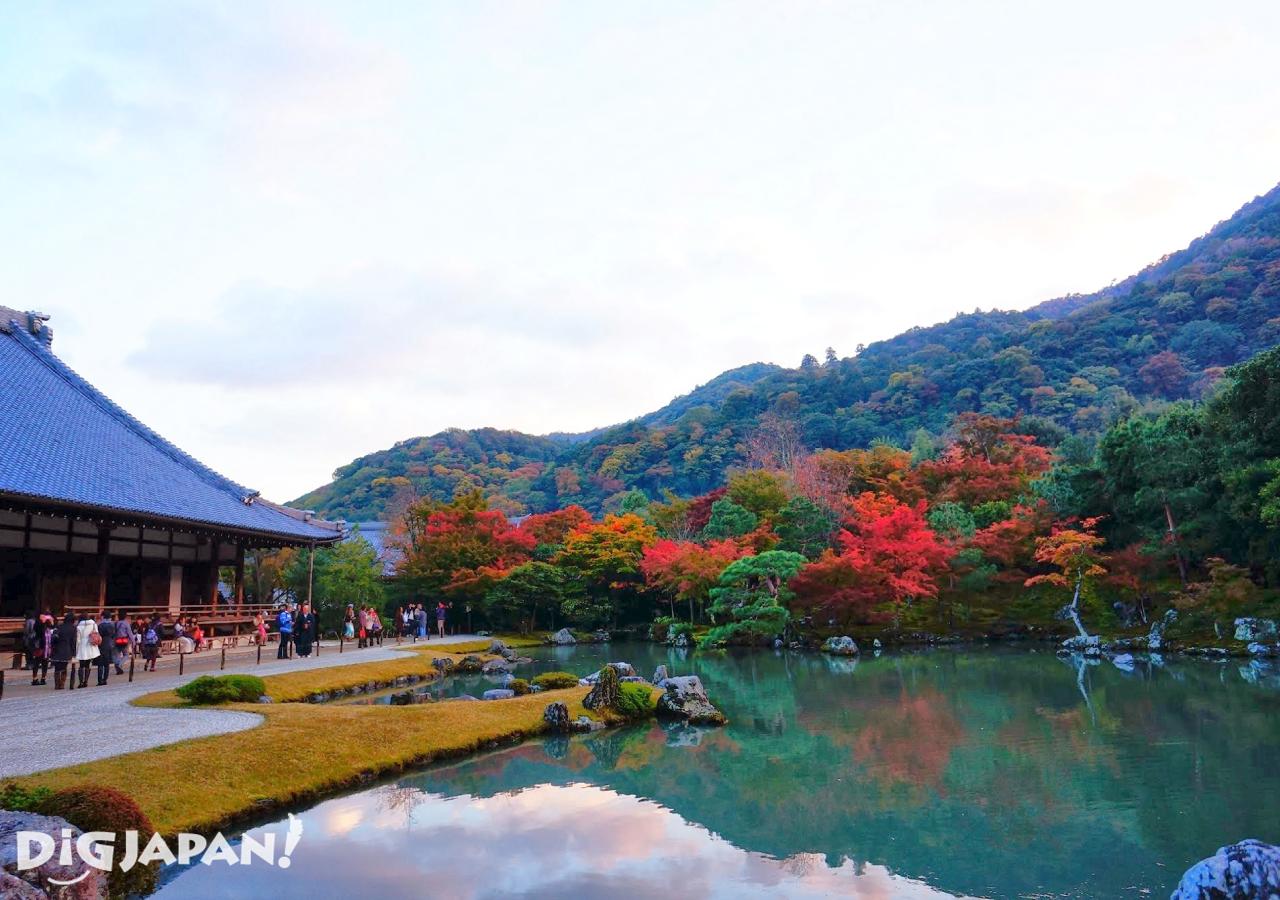京都必看楓葉景點-天龍寺