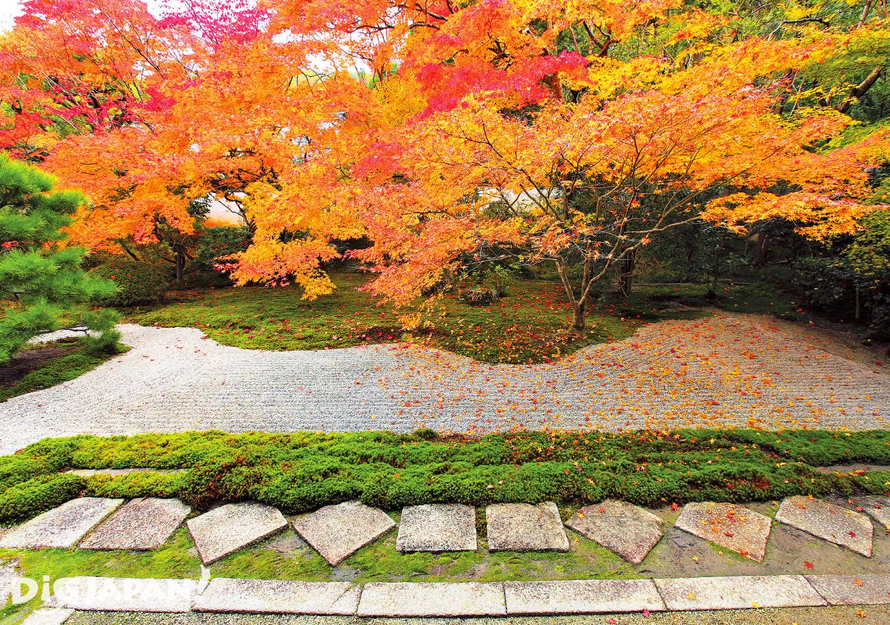京都必看楓葉景點-南禪寺