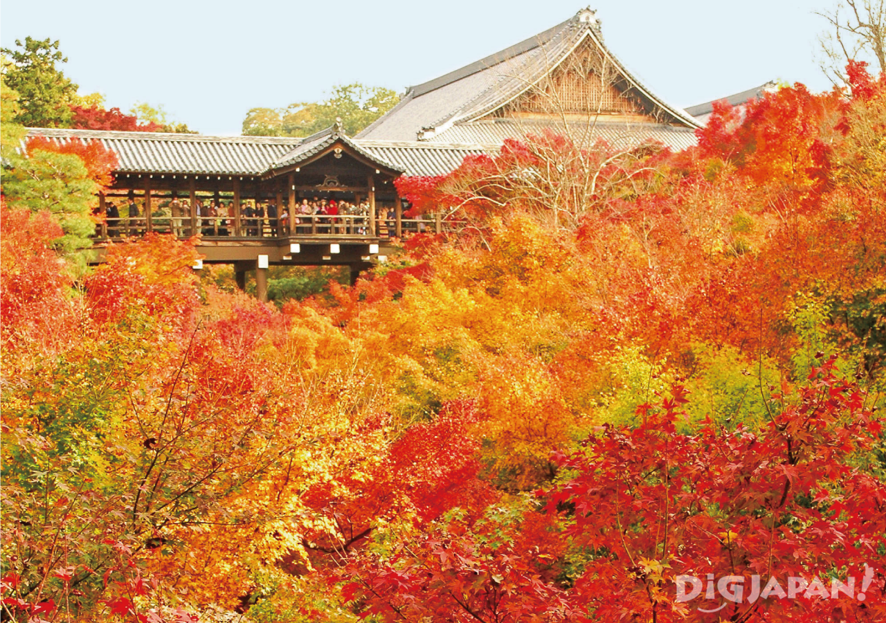 Tofuku-ji Temple in the fall