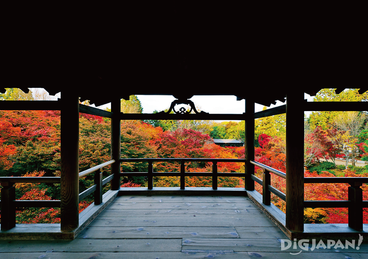 Tofuku-ji Temple in the autumn