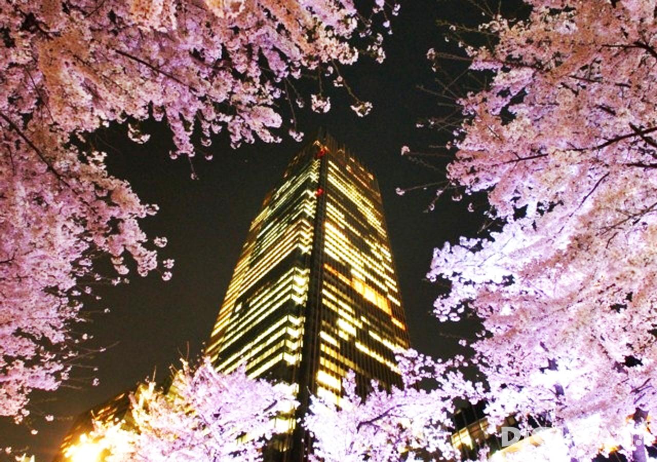 도쿄 미드 타운-1