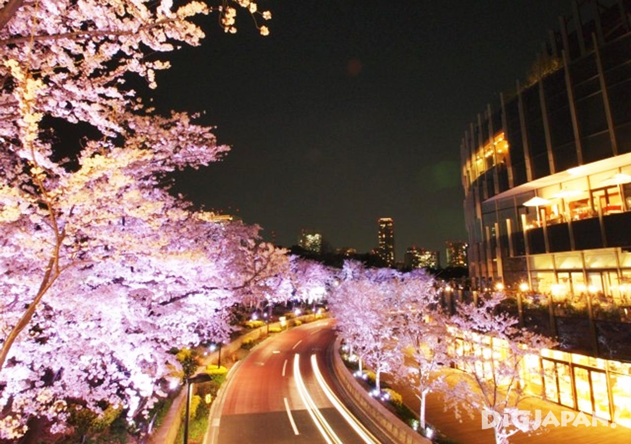 도쿄 미드 타운-2