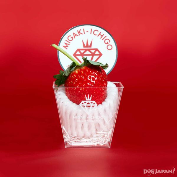 MIGAKI-ICHIGO Platinum Strawberry