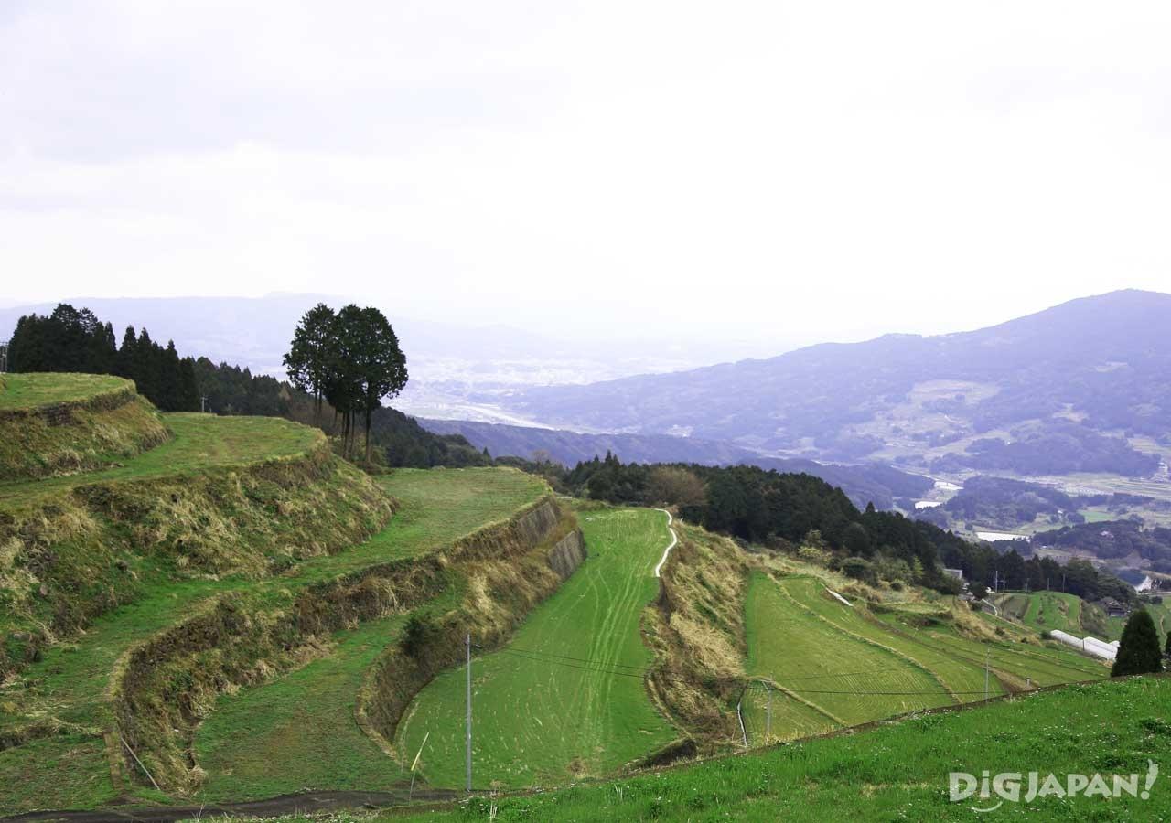 日本の棚田百選「岳の棚田」は絶景ポイント