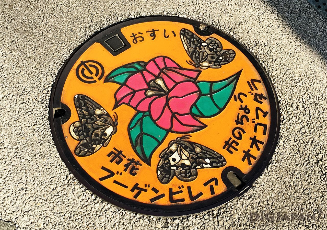 Manhole cover art butterflies flowers okinawa naha