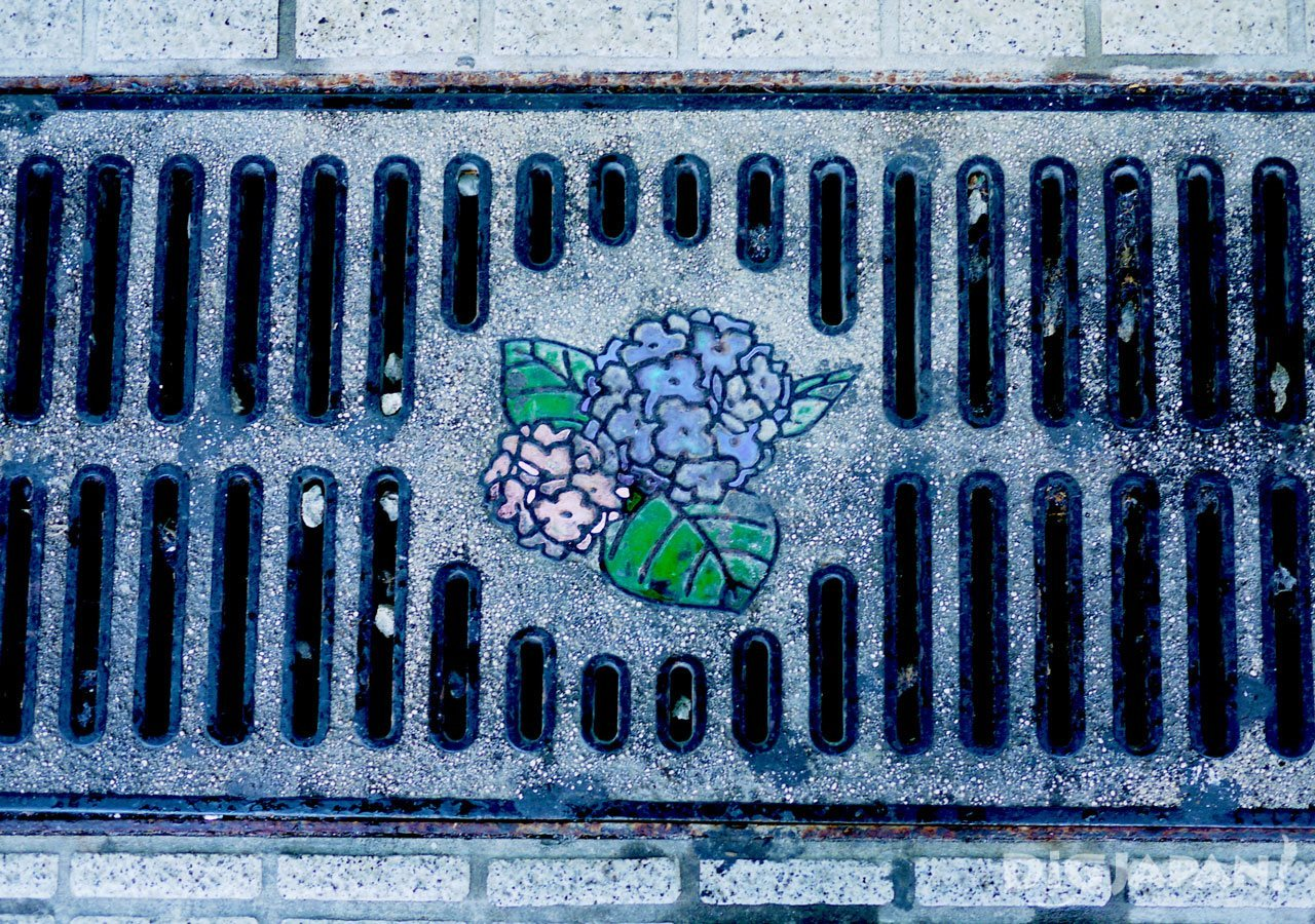 Manhole cover art Nagasaki hydrangea