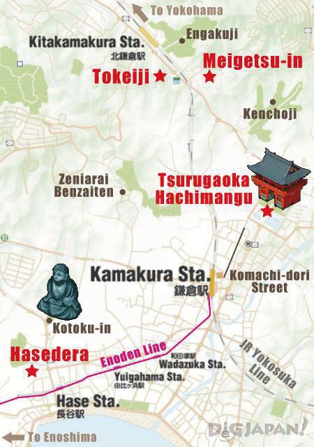 kamakura ajisai19