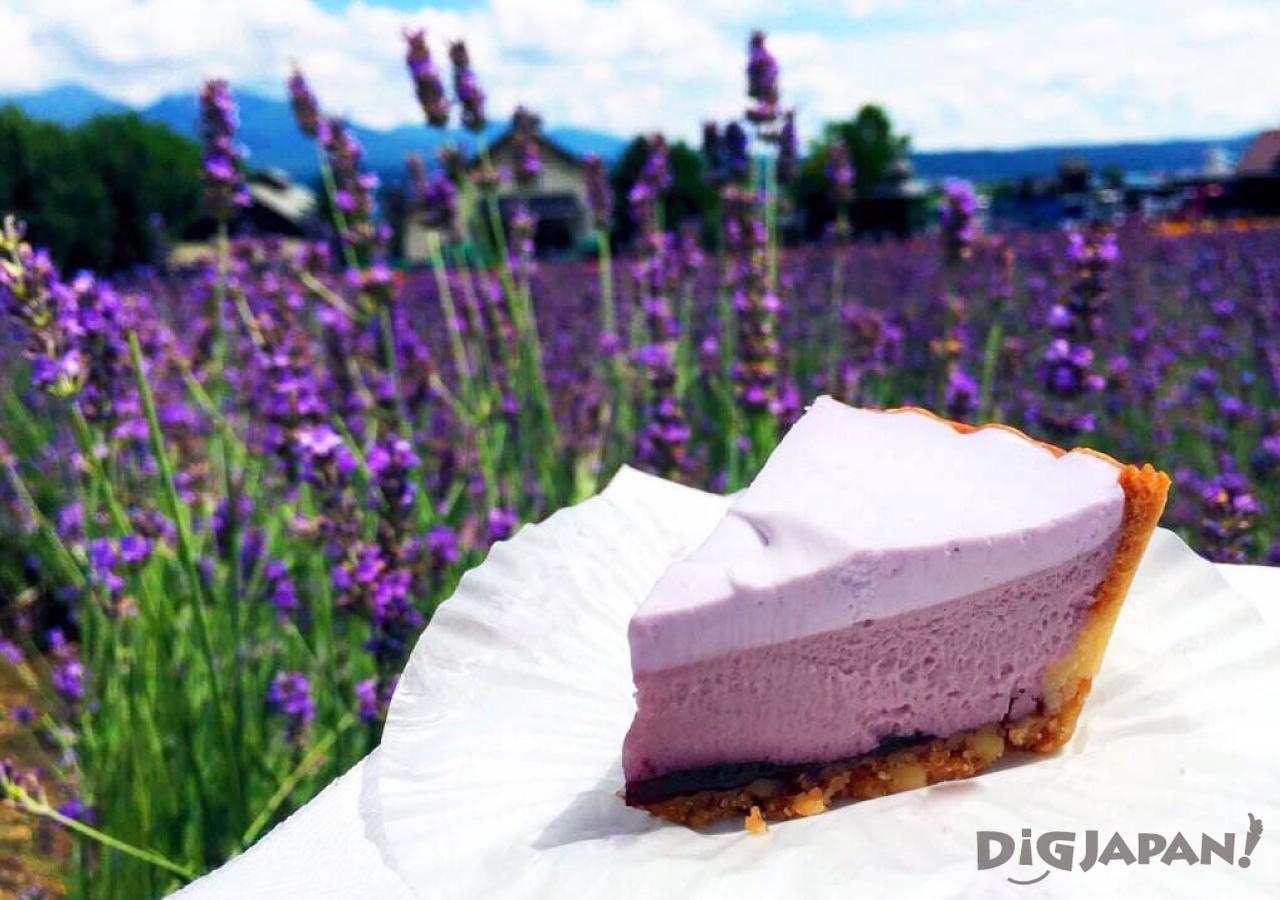 홋카이도의 후라노의 여름 라벤더 치즈케이크