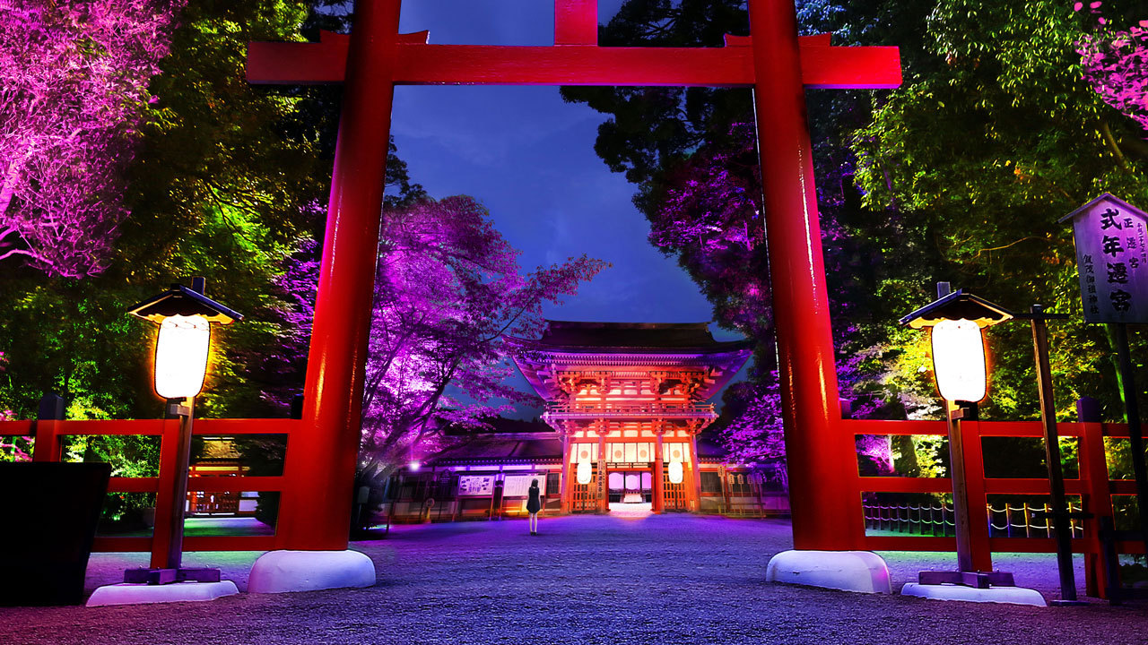 Light Festival in Tadasu no Mori at Shimogamo Shrine Kyoto teamLab