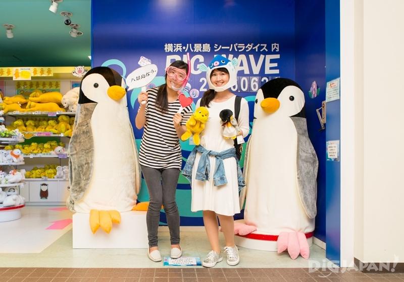 橫濱八景島海島樂園企鵝玩偶合照