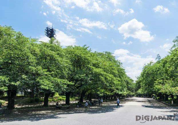 Ueno Park Tokyo_2