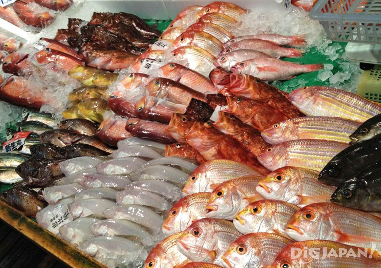 ตลาดปลานากาฮามะ_ปลาสดๆน่ากิน
