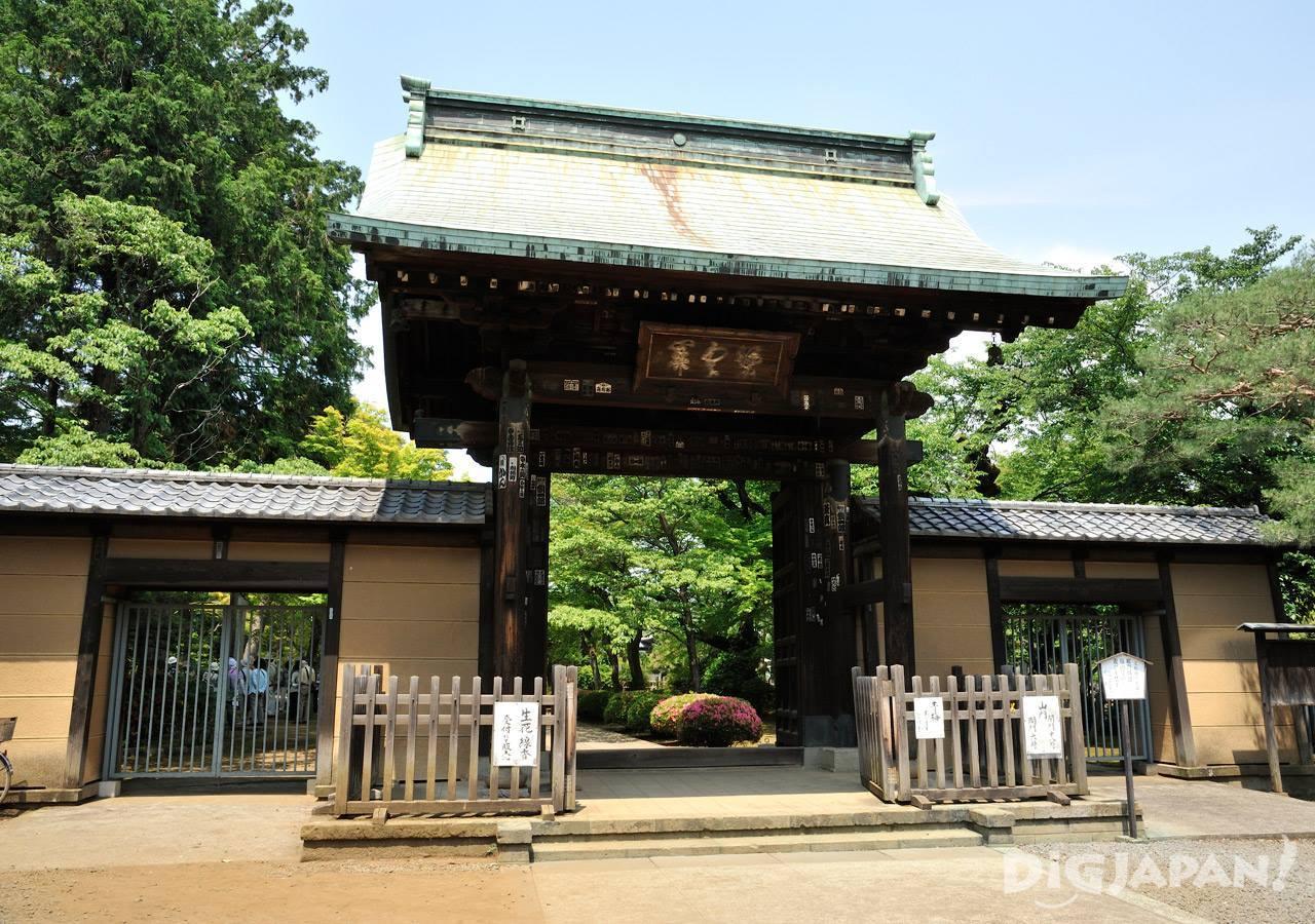 Gotoku-ji Temple Tokyo Maneki Neko_1