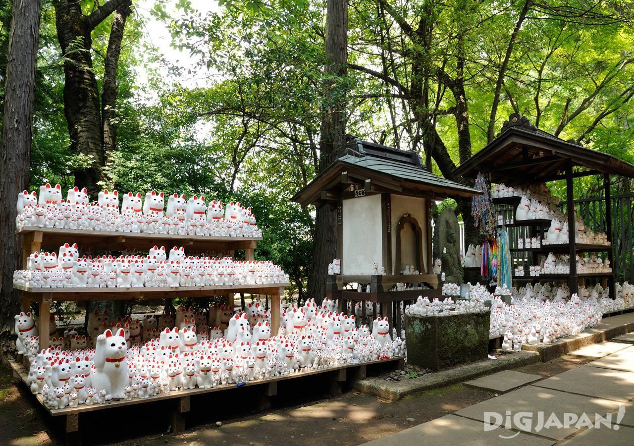 Gotoku-ji Temple Tokyo Maneki Neko_6
